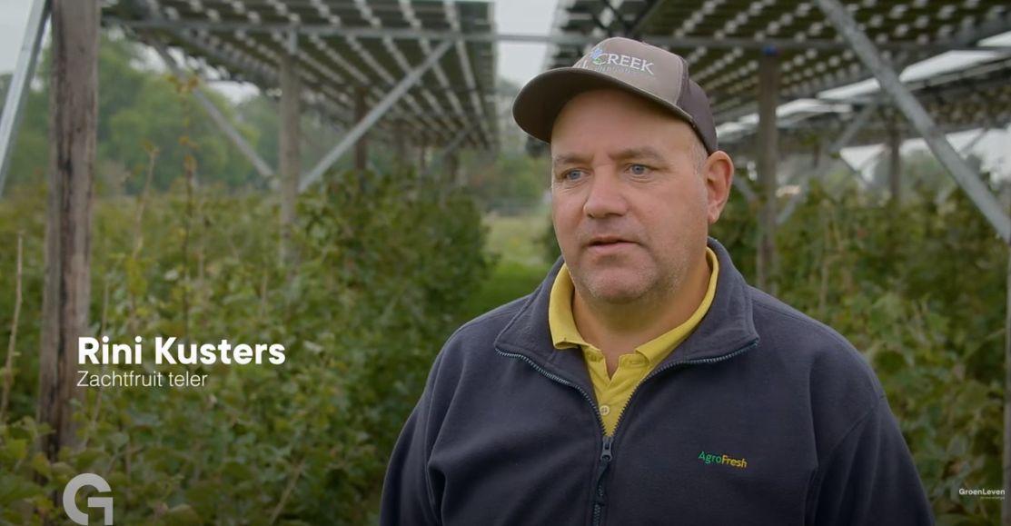 Bessenteler Rini Kusters combineert teelt met zonnepanelen